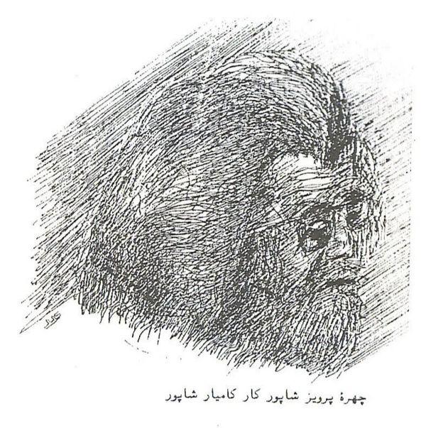 کامیار شاپور در بریتانیا در رشته نقاشی تحصیل کرد و به ایران بازگشت