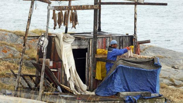 Pescador en Groenlandia