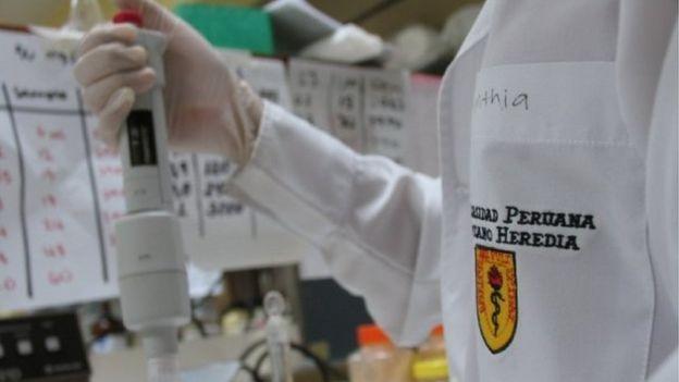 Experimento con maca peruana en un laboratorio