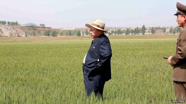 North Korean leader Kim Jong-un visits a farm