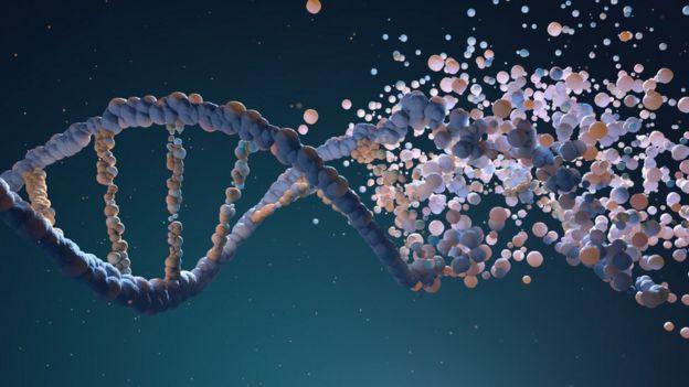Ilustração mostra dupla hélice representando o DNA