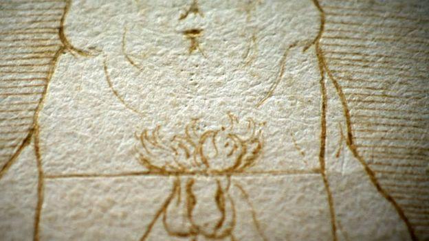 Detalle del Hombre de Vitruvio