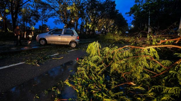 倒塌的樹木擋路,汽車需要改道行駛。