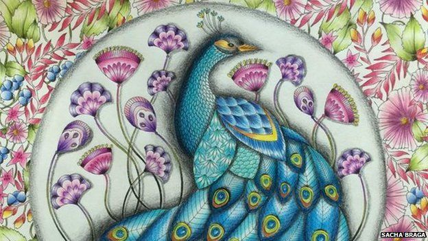 Sacha Bragas Completed Colouring In Sheet Of A Peacock