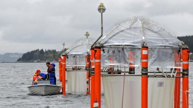 Plataforma de testes no mar