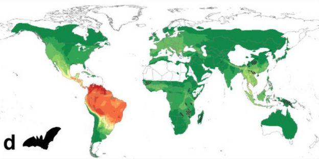 Mapa de riesgo por virus procedentes de murciélagos