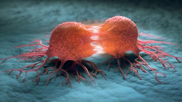 Ilustración células cancerígenas.