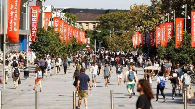 澳洲悉尼大學