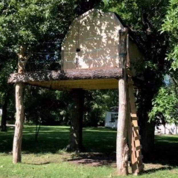 Ксавьер привычно играл в свое домике на деревьях, когда на него напали осы