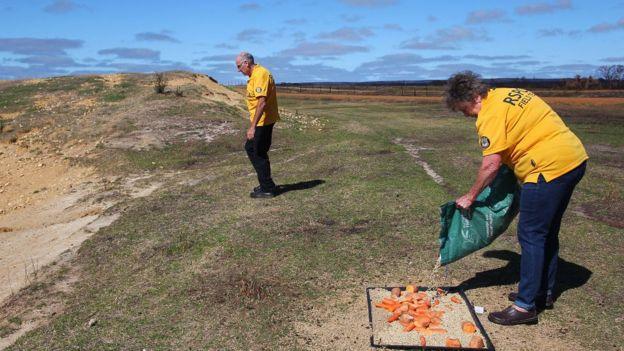 Dos personas hacen trabajos de rehabilitación en Kangaroo Island, Australia