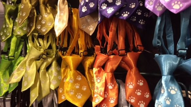 Dog neckties from Petnecks