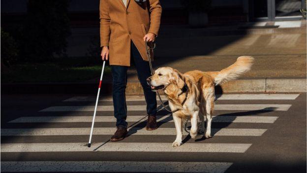 Hombre ciego con bastón y perro