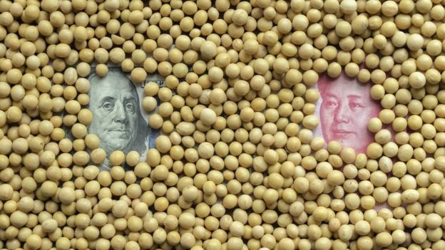 受中美加徵關稅影響,美國大豆價格下跌。