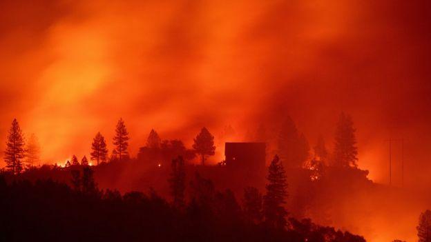 California'daki yangınlar ABD'nin yüz yıldır gördüğü en kötü yangındı