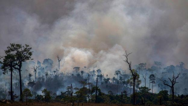 Amazon yangınlarından bir görüntü