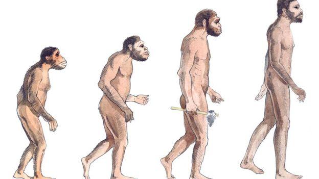 Homininlər milyon illər boyunca dik yeriyiblər