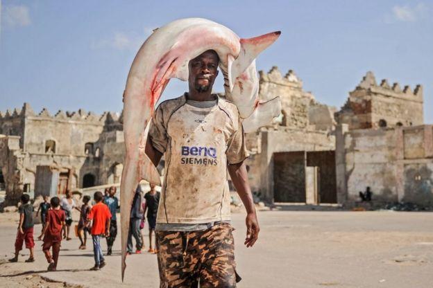 ชาวประมงโซมาลีแบกฉลามหัวค้อนที่เขาจับได้เพื่อไปขายที่ตลาดในเมืองโมกาดิชู เมื่อมกราคม 2018
