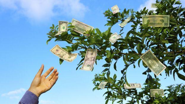 Dinero en un árbol