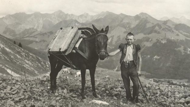 Archive photo of a boy and his horse on the Alps