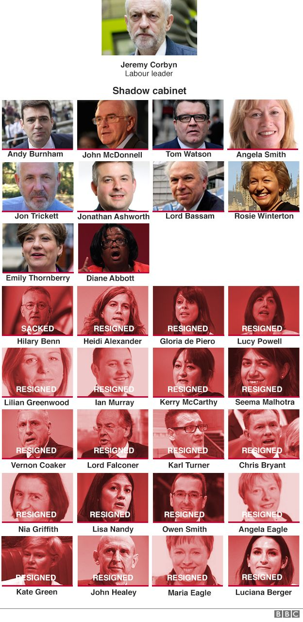 Shadow cabinet resignations