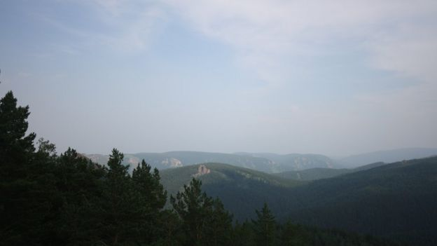Floresta em Krasnoyask, na Sibéria, na Rússia