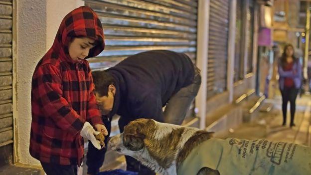 Ferchy y un niño dan de comer a un perro callejero.