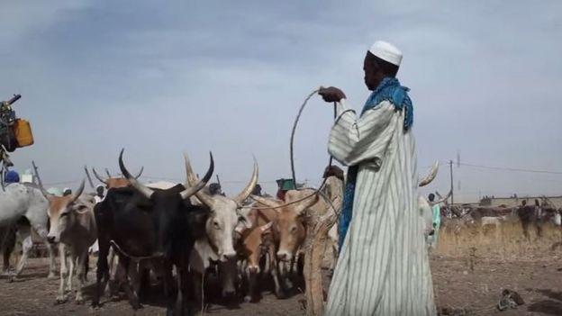 Daral Technologies; Amadou Sow; Afrique Avenir; Rémy Nsabimana, BBC Afrique; jeunes entrepreneurs africains