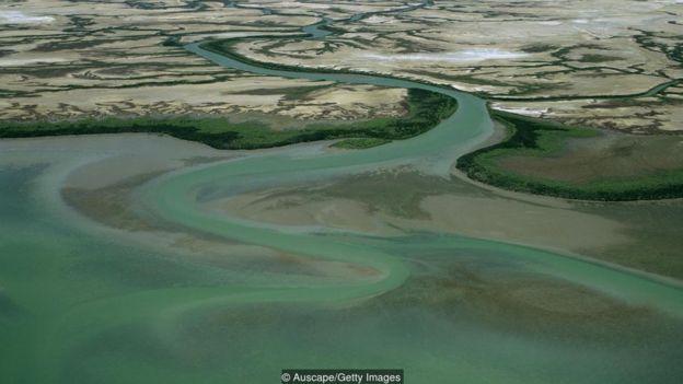 Golfo da Carpentária
