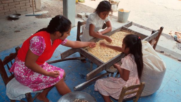 Mujeres zapotecas