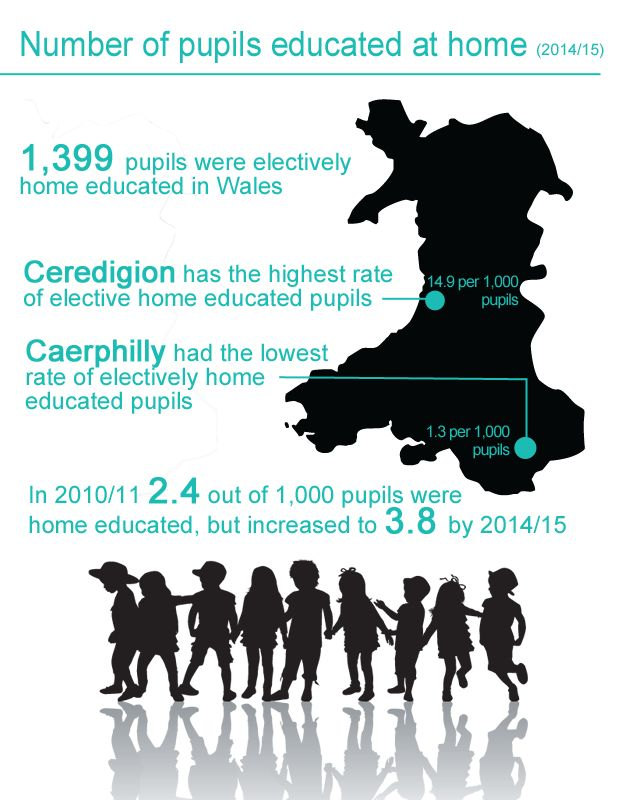Home education stats