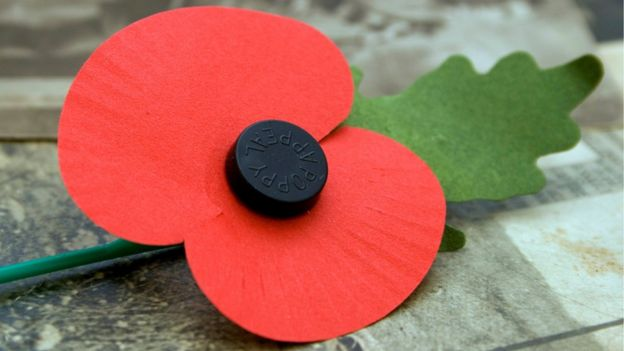 Image result for scottish poppy