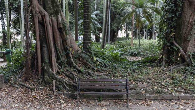 Banco do parque Jardim da Luz, no centro de São Paulo, onde dezenas de mulheres trabalham como prostituta