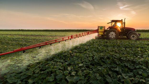 Plantação e pesticida