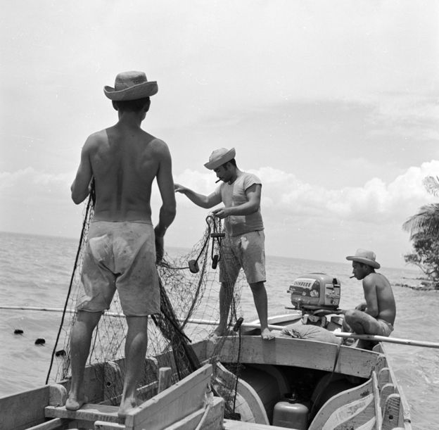 Venezuela once had its own flourishing fishing industry (island of Toas, near Maracaibo, 1950)