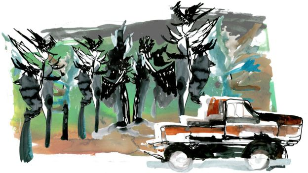 Ilustración de un camión frente a unos árboles.