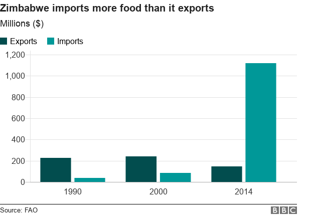 Graph about Zimbabwe's food exports and imports