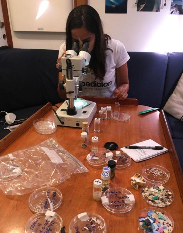 Leiva en el microscopio analizando muestras obtenidas del océano