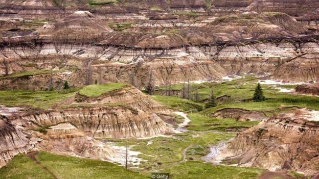 Kanadanın Badlands ərazisində yatan sümüklər buranı dinozavr fosillərinin ən zəngin olduğu bölgələrdən biri edir