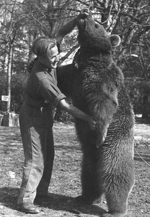 A soldier gets to grips with Wojtek. Photo courtesy of The Polish Institute and Sikorski Museum