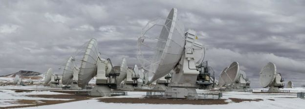 View of the antennae