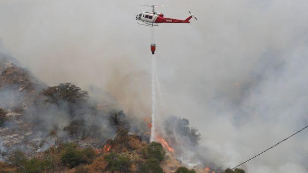 加州今年頻傳森林大火(Credit: Reuters)