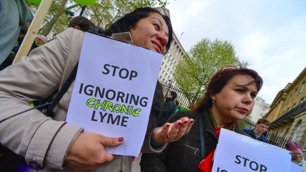 The controversy over the chronic form of Lyme disease - BBC News