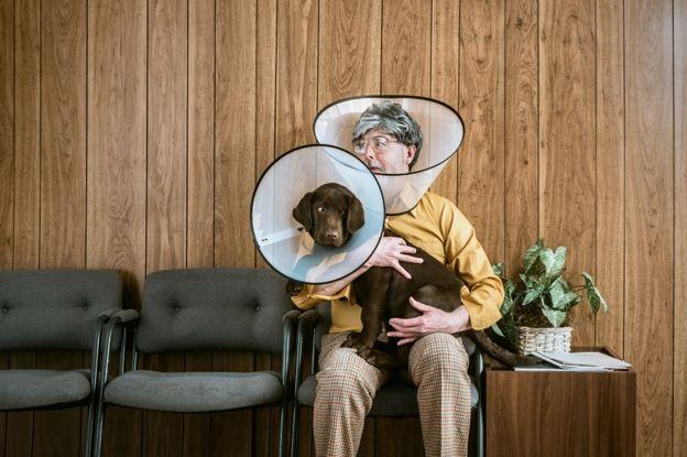 ทั้งคนและสุนัขสวมอุปกรณ์ป้องกันการเกา