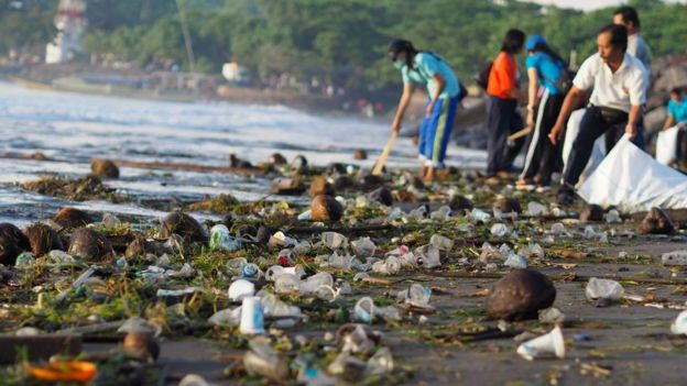 Voluntarios limpiando una de las playas de Bali.