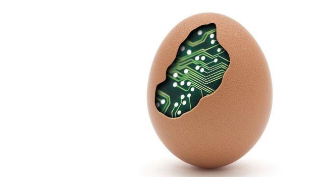 Huevo con internet adentro