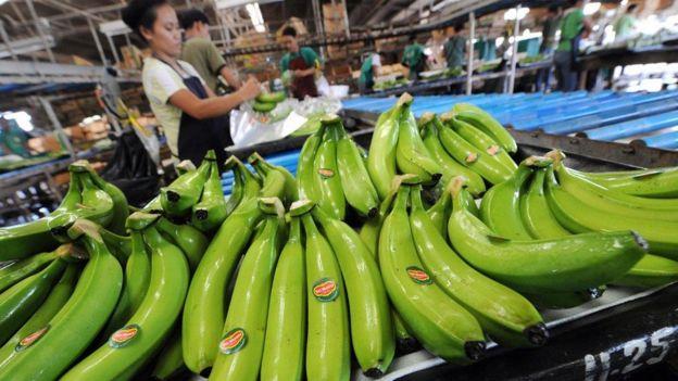 Trung Quốc từng dọa cấm nhập chuối từ Philippines vì bãi cạn Scarborough mà Trung Quốc tự nhiên đến chiếm