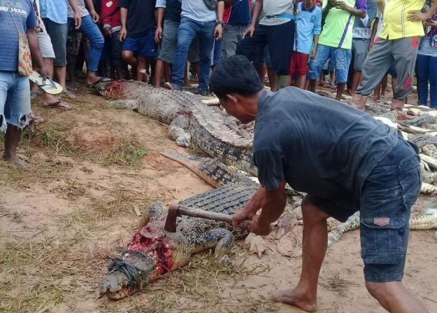 Homem golpeia crocodilo com um machado