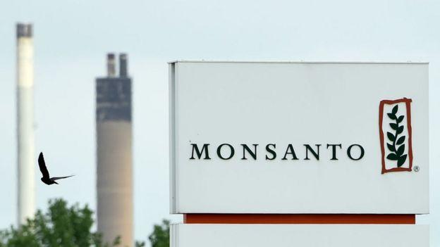 Logo de Monsanto.