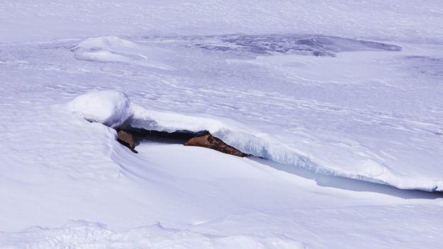 paisaje nevado en el parque La Jacques Cartier.