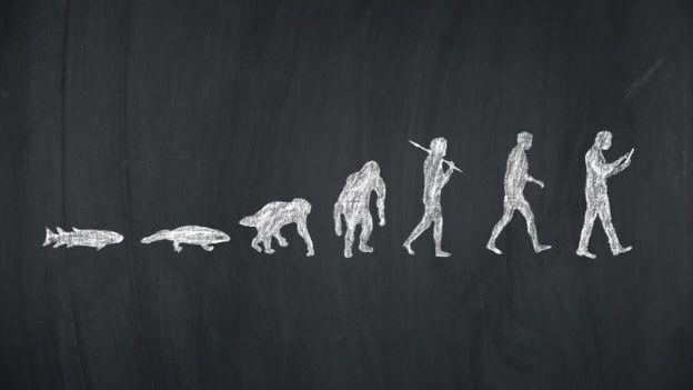 Imagem da evolução, com sete figuras, do peixe ao usuário de smartphone